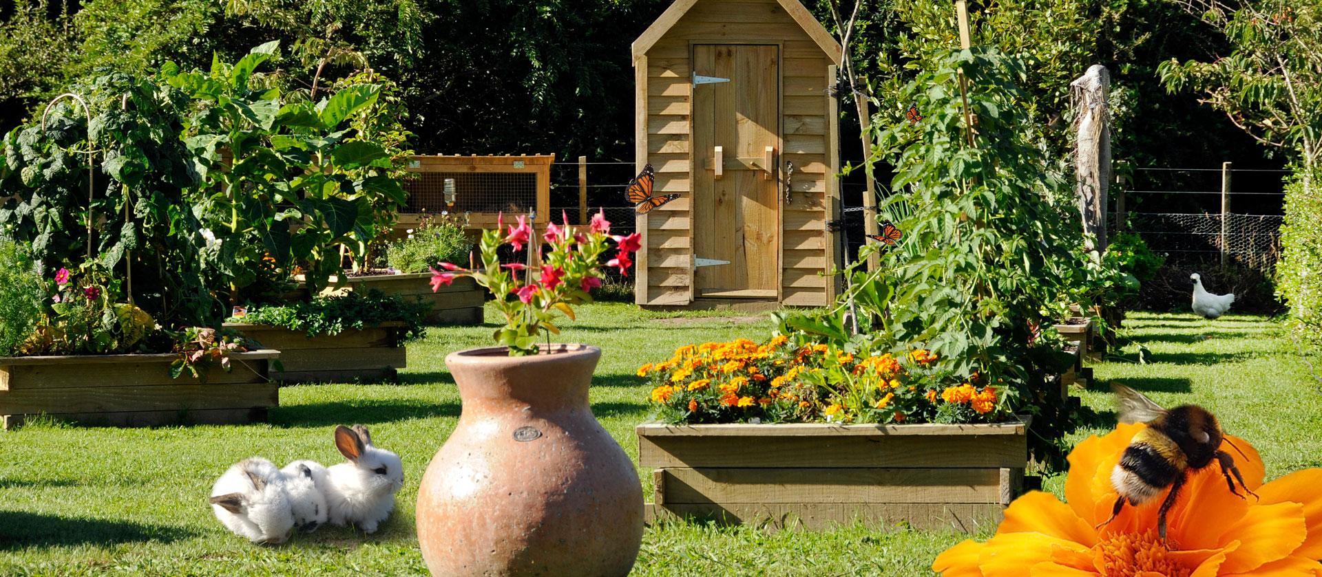 McGregor's Garden (Peter Rabbit)